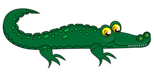 Crocodile clip-art. Royalty Free Stock Image