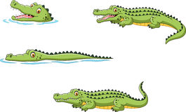 Crocodile collection set. Illustration of Crocodile collection set royalty free illustration