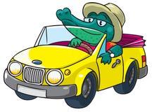 Crocodile-conducteur Photo libre de droits