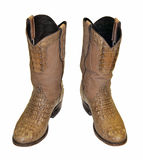 Crocodile cowboy boots. A pair of brown crocodile cowboy boots isolated on white Royalty Free Stock Photography