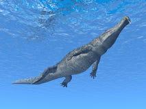 Crocodile de plongée Illustration Libre de Droits