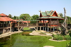 Crocodile farm in Bangkok Royalty Free Stock Photography