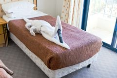 Crocodile figure from towels on bed Royalty Free Stock Images