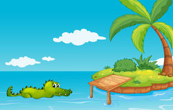 A crocodile going to the island Stock Images