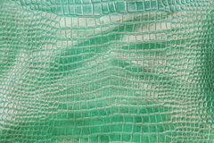 Crocodile green leather texture background Royalty Free Stock Images