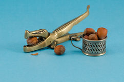 Crocodile hazel nut nut crush tool cup blue. Golden color steel crocodile form nut shell crush tool and small cup full of hazel nuts cubnuts on blue background royalty free stock photos