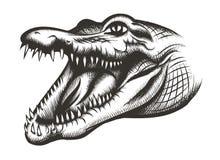 Crocodile head black. Animal reptile, wild predator, mouth and wildlife, teeth dangerous, vector illustration Stock Image