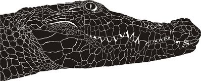 Crocodile head. Vector illustration pattern background crocodile heads Royalty Free Stock Photos