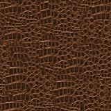 Crocodile Hide. Seamless Texture Tile from Photographic Original royalty free stock image