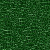 Crocodile Hide. Seamless Texture Tile from Photographic Original royalty free stock images