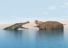 Crocodile and Hippo Stock Photo