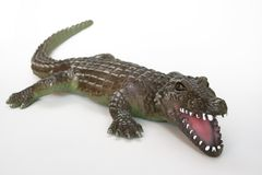Crocodile I. Plastic crocodile on white stock photo