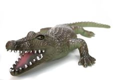 Crocodile II. Plastic crocodile on white stock image