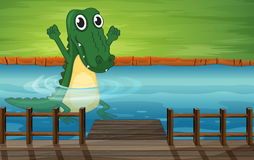A crocodile Stock Photo