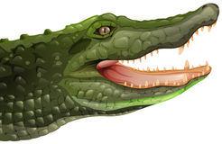 A crocodile Stock Images