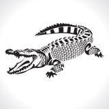 Crocodile. Image graphic style of crocodile   on white background Stock Image
