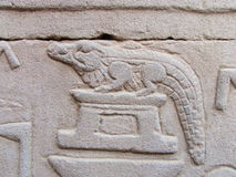 Crocodile at Kom Ombo Temple Royalty Free Stock Image