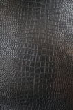 Crocodile leather Royalty Free Stock Photos
