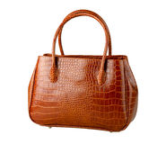 Crocodile leather bag isolated  Stock Images