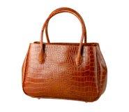 Crocodile leather bag isolated stock images