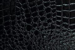 Crocodile leather Stock Photo