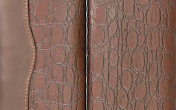 Crocodile leather brown Stock Images