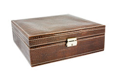 Crocodile leather brown box stock photo