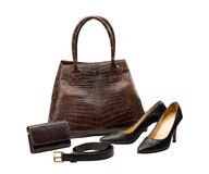 Crocodile leather fashion products Royalty Free Stock Image