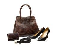 Crocodile leather fashion products Royalty Free Stock Image