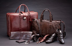 Crocodile leather fashion products Stock Photography