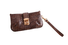 Crocodile leather handbag Stock Image