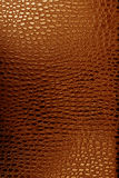 Crocodile leather texture. Leather texture brown background,crocodile leather Royalty Free Stock Images