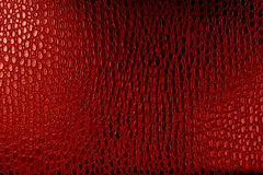 Crocodile leather texture. Leather texture red background,crocodile leather Stock Photography