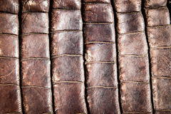 Crocodile leather texture background Royalty Free Stock Photography