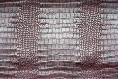 Crocodile leather texture royalty free stock photos