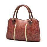 Crocodile leather handbag  Stock Images
