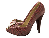 Crocodile leather women's shoes with high heels. Close up on a light background stock photography