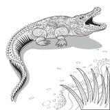 Crocodile line art. Image graphic style of crocodile  isolated on white background Royalty Free Stock Images