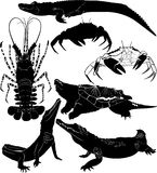 Crocodile Lobster Crawfish crab turtle Stock Photo