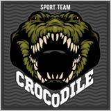 Crocodile mascot for a sport team. Vector illustration. Crocodile mascot for a sport team on dark background. Vector illustration vector illustration