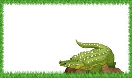A crocodile on nature frame. Illustration vector illustration