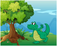 A crocodile near the tree Stock Photography