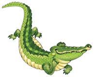Crocodile pattern Royalty Free Stock Photo