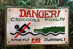 Crocodile Pool No Swimming Sign Stock Photos