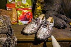 Crocodile products in a shopping window, hunting and killing animals for luxury products, Kwadendamme, The netherlands, March 19,. Many crocodile products in a stock photos