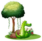 A crocodile reading beside the tree Stock Photography