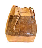 Crocodile ruksack Stock Images