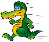 Crocodile Runner. Colored Cartoon Illustration, Vector royalty free illustration