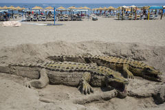 Crocodile sand in Andalusia Stock Image