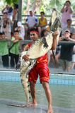 Crocodile Show. In Thailand, Pattaya Royalty Free Stock Image